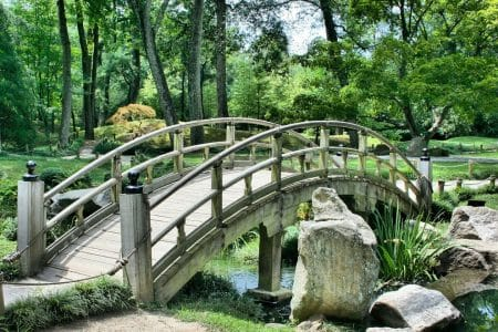 L'aménagement et l'entretien du jardin