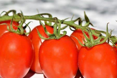 Les astuces indispensables pour faire pousser ses tomates