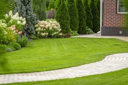 4 outils indispensables pour avoir une belle pelouse