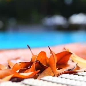 Quelles astuces pour bien entretenir sa piscine?